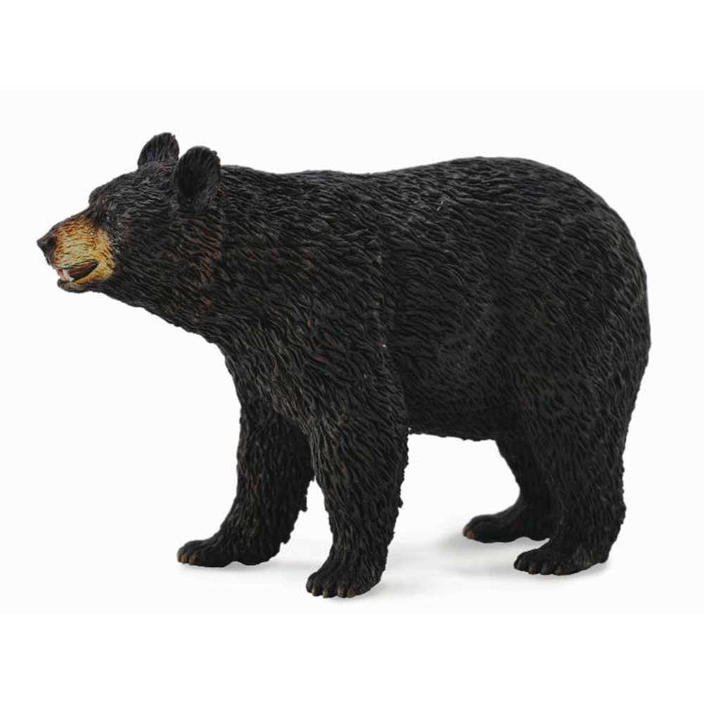 COLLECTA AMERICAN BLACK BEAR 9cm X 6.2cm