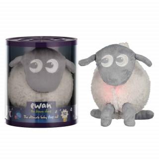 EWAN THE DREAM SHEEP- SIVA