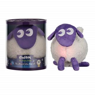 EWAN THE DREAM SHEEP- LJUBICASTA