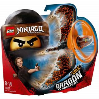 LEGO NINJAGO COLE DRAGON MASTER