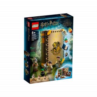 LEGO HARRY POTTER TM TBD-HP3-2021
